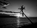 End of Day Maui Hawaii B&W