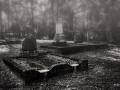 Old-Graveyard