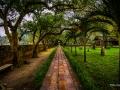 Temple Grounds Hoa Lu North Vietnam