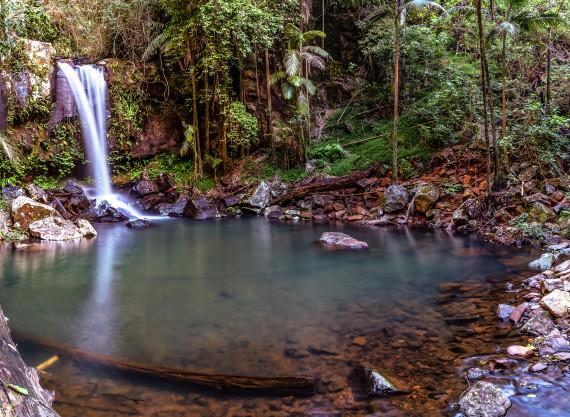Curtis Falls Mt Tambourine